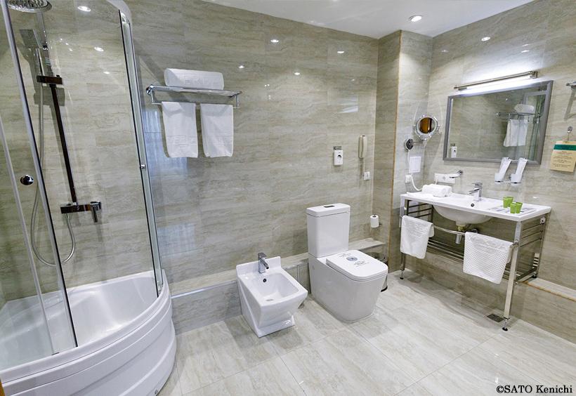 浴室タイプがシャワーのみの部屋