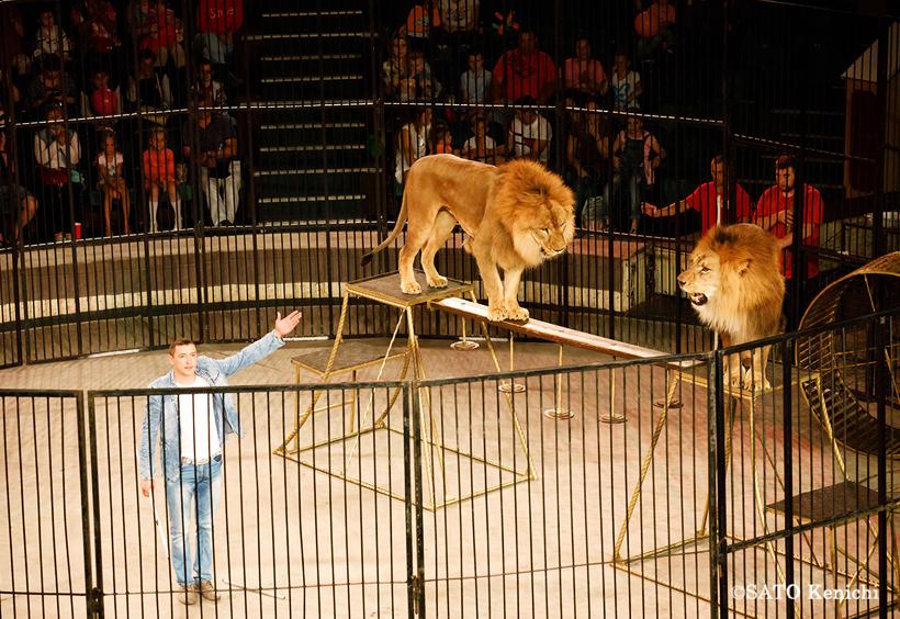 Краевой цирк下車にあるサーカス