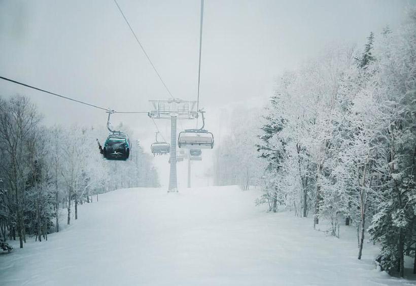 リフトの足元では白樺並木の樹氷が見られます